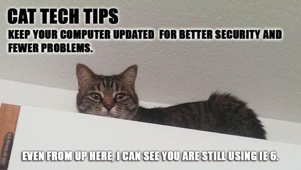Cat Tech Tips - Computer Updates