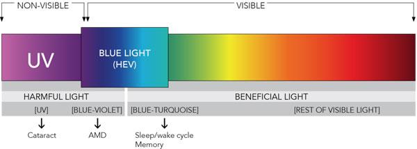 Blue+Light+HEV1
